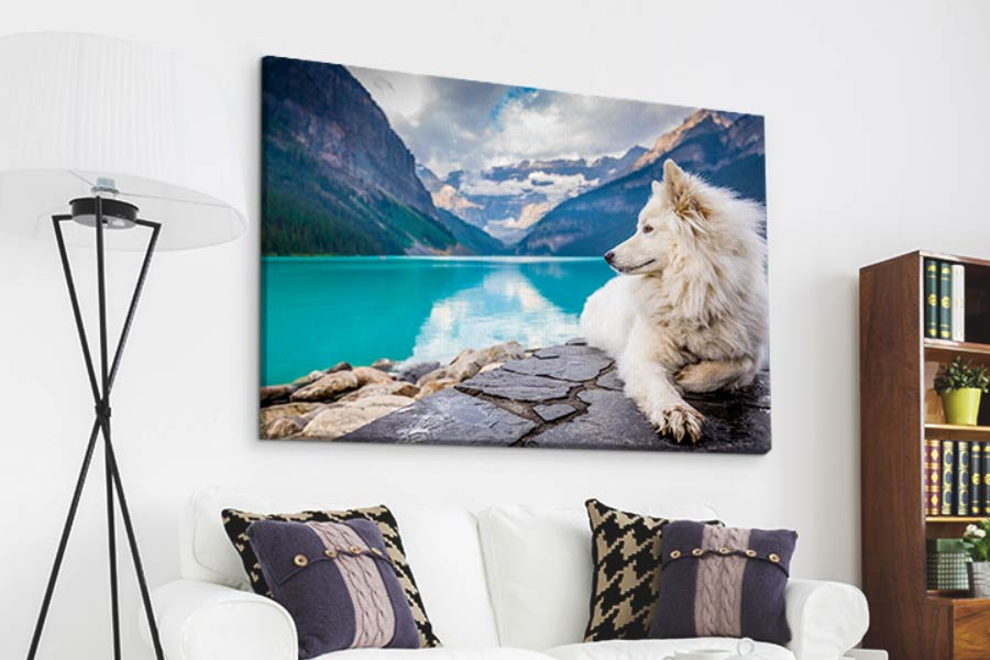 What Is a Canvas Print: All You Need to Know