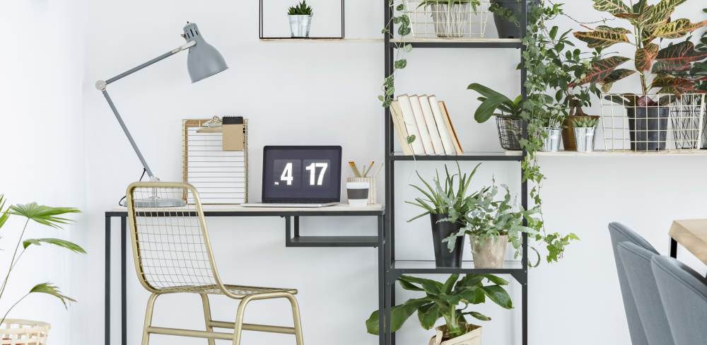 Home Office Ideas for the First-Time Homeworker. Plants next to home office workstation.