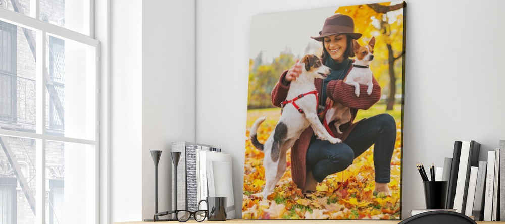 How to Hang Acrylic Prints. Beautiful photo acrylic print with lady and her dogs.