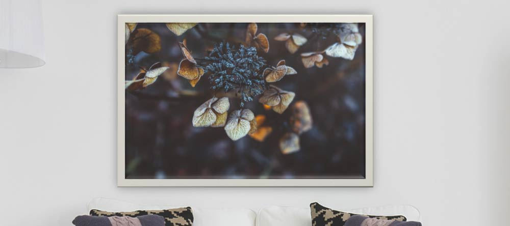 What is a Canvas Print? Photo canvas print with decorative frame.